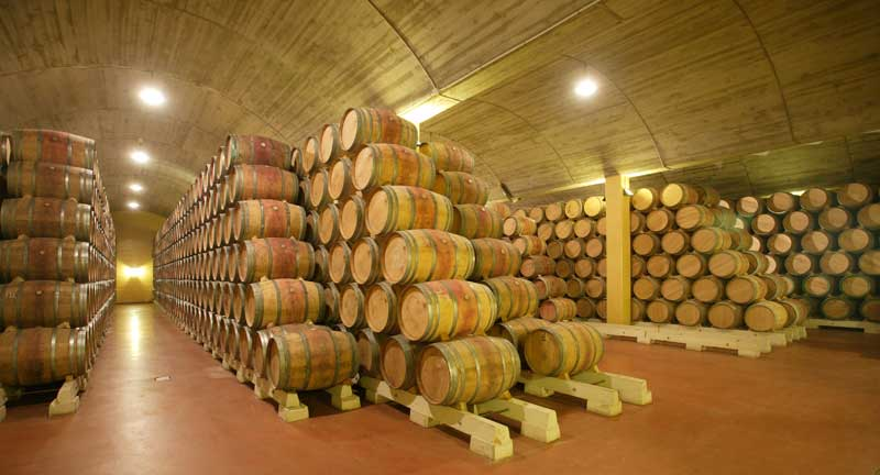 Bodegas Luis Canas-Villabuena de Alava-Ruta del Vino de Rioja Alavesa  Quintas
